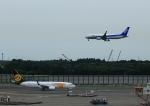 タミーさんが、成田国際空港で撮影したMIATモンゴル航空 737-8SHの航空フォト(写真)
