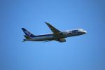 なぎっちさんが、秋田空港で撮影した全日空 787-8 Dreamlinerの航空フォト(写真)