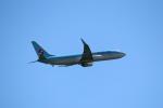 なぎっちさんが、秋田空港で撮影した大韓航空 737-8Q8の航空フォト(写真)