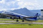 いっち〜@RJFMさんが、宮崎空港で撮影した全日空 A321-272Nの航空フォト(写真)