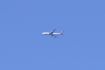 多楽さんが、羽田空港で撮影したルフトハンザドイツ航空 747-230Bの航空フォト(写真)