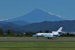 yamatoさんが、静岡空港で撮影した海上保安庁 Falcon 900の航空フォト(写真)