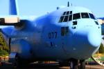 ちゅういちさんが、入間飛行場で撮影した航空自衛隊 C-130H Herculesの航空フォト(写真)