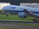 ✈︎Skyteam文✈︎N723AN✈︎さんが、成田国際空港で撮影した全日空 777-381/ERの航空フォト(写真)