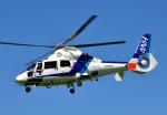 チャーリーマイクさんが、東京ヘリポートで撮影したオールニッポンヘリコプター AS365N2 Dauphin 2の航空フォト(写真)