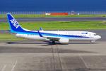 PASSENGERさんが、羽田空港で撮影した全日空 737-881の航空フォト(写真)