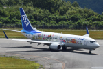 miffyさんが、広島空港で撮影した全日空 737-881の航空フォト(写真)