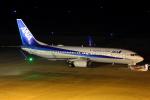 Dickiesさんが、仙台空港で撮影した全日空 737-881の航空フォト(写真)