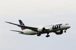 こだしさんが、成田国際空港で撮影したLOTポーランド航空 787-8 Dreamlinerの航空フォト(写真)