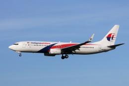 航空フォト:9M-MLN マレーシア航空 737-800