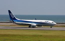 asuto_fさんが、大分空港で撮影した全日空 737-881の航空フォト(飛行機 写真・画像)