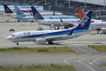 いっとくさんが、関西国際空港で撮影した全日空 737-781の航空フォト(写真)