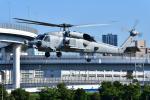 はるかのパパさんが、東京臨海広域防災公園ヘリポートで撮影したアメリカ海軍 MH-60R Seahawk (S-70B)の航空フォト(写真)