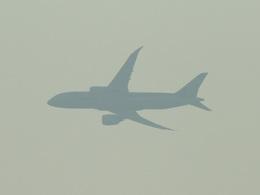 Mottyさんが、北九州空港で撮影した全日空 787-8 Dreamlinerの航空フォト(飛行機 写真・画像)