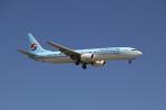utarou on NRTさんが、成田国際空港で撮影した大韓航空 737-9B5の航空フォト(写真)