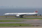 やつはしさんが、羽田空港で撮影した日本航空 777-346/ERの航空フォト(写真)