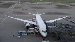 Lovely-Akiさんが、羽田空港で撮影した全日空 787-8 Dreamlinerの航空フォト(写真)