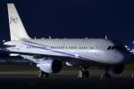 多摩川崎2Kさんが、羽田空港で撮影したグローバル・ジェット・ルクセンブルク A319-115CJの航空フォト(写真)