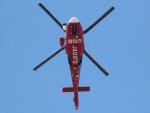 丸めがねさんが、東京ヘリポートで撮影した東京消防庁航空隊 AS365N3 Dauphin 2の航空フォト(写真)