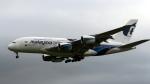 captain_uzさんが、成田国際空港で撮影したマレーシア航空 A380-841の航空フォト(写真)