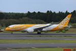 ケロさんが、成田国際空港で撮影したスクート・タイガーエア 787-8 Dreamlinerの航空フォト(写真)