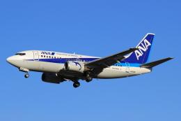 StarMarineさんが、成田国際空港で撮影したANAウイングス 737-54Kの航空フォト(写真)