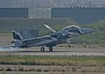 がいなやつさんが、小松空港で撮影した航空自衛隊 F-15DJ Eagleの航空フォト(写真)