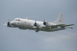 うめやしきさんが、厚木飛行場で撮影した海上自衛隊 P-3Cの航空フォト(写真)