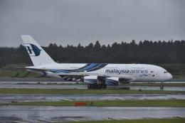 よしポンさんが、成田国際空港で撮影したマレーシア航空 A380-841の航空フォト(写真)