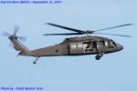 Chofu Spotter Ariaさんが、キャンプ富士で撮影したアメリカ陸軍 UH-60M Black Hawk (S-70A) の航空フォト(飛行機 写真・画像)
