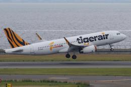 yabyanさんが、中部国際空港で撮影したタイガーエア台湾 A320-232の航空フォト(飛行機 写真・画像)