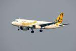 まいけるさんが、スワンナプーム国際空港で撮影したスクート・タイガーエア A320-232の航空フォト(写真)