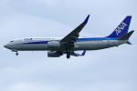 apphgさんが、静岡空港で撮影した全日空 737-881の航空フォト(写真)
