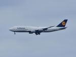 tamitanさんが、羽田空港で撮影したルフトハンザドイツ航空 747-830の航空フォト(写真)