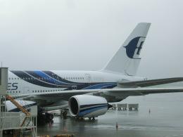 tamonさんが、成田国際空港で撮影したマレーシア航空 A380-841の航空フォト(飛行機 写真・画像)