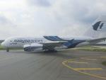 tamonさんが、クアラルンプール国際空港で撮影したマレーシア航空 A380-841の航空フォト(写真)