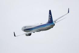totsu19さんが、小松空港で撮影した全日空 737-881の航空フォト(飛行機 写真・画像)