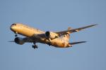 Jinxさんが、ブリスベン空港で撮影したエティハド航空 787-9の航空フォト(写真)