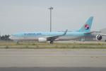 きんめいさんが、関西国際空港で撮影した大韓航空 737-8Q8の航空フォト(写真)