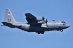 falconさんが、三沢飛行場で撮影したアメリカ空軍 C-130H Herculesの航空フォト(写真)