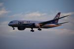 こーき747さんが、小松空港で撮影した全日空 787-8 Dreamlinerの航空フォト(写真)