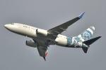 リョウさんが、成田国際空港で撮影したBBJ One 737-7CJ BBJの航空フォト(写真)