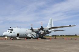 nob24kenさんが、八戸航空基地で撮影した海上自衛隊 C-130Rの航空フォト(写真)