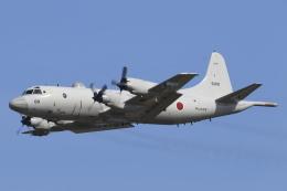 nob24kenさんが、八戸航空基地で撮影した海上自衛隊 P-3Cの航空フォト(写真)
