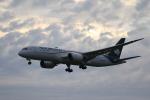 msrwさんが、成田国際空港で撮影したアエロメヒコ航空 787-8 Dreamlinerの航空フォト(写真)