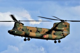 hidetsuguさんが、札幌飛行場で撮影した陸上自衛隊 CH-47JAの航空フォト(写真)