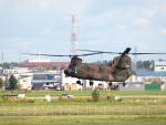 ここはどこ?さんが、札幌飛行場で撮影した陸上自衛隊 CH-47JAの航空フォト(写真)