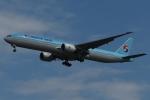 木人さんが、成田国際空港で撮影した大韓航空 777-3B5/ERの航空フォト(写真)