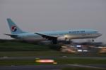 木人さんが、成田国際空港で撮影した大韓航空 737-9B5の航空フォト(写真)