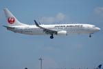 apphgさんが、羽田空港で撮影した日本航空 737-846の航空フォト(写真)